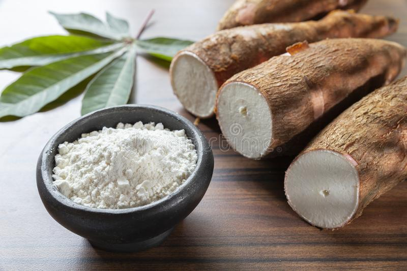 Amidon cru de yucca sur la table en bois - Manihot esculenta photos libres de droits