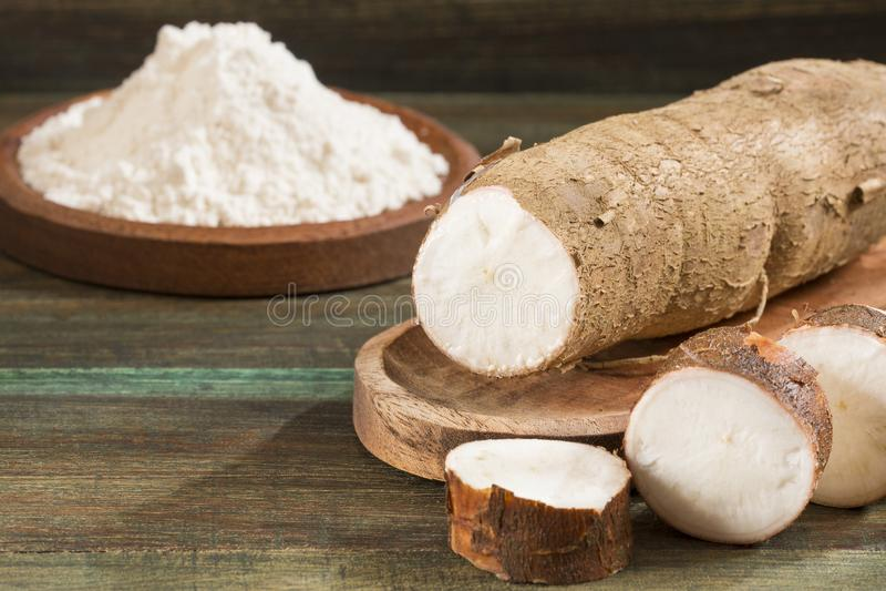 Amidon de manioc cru - Manihot esculenta Fond en bois photo libre de droits