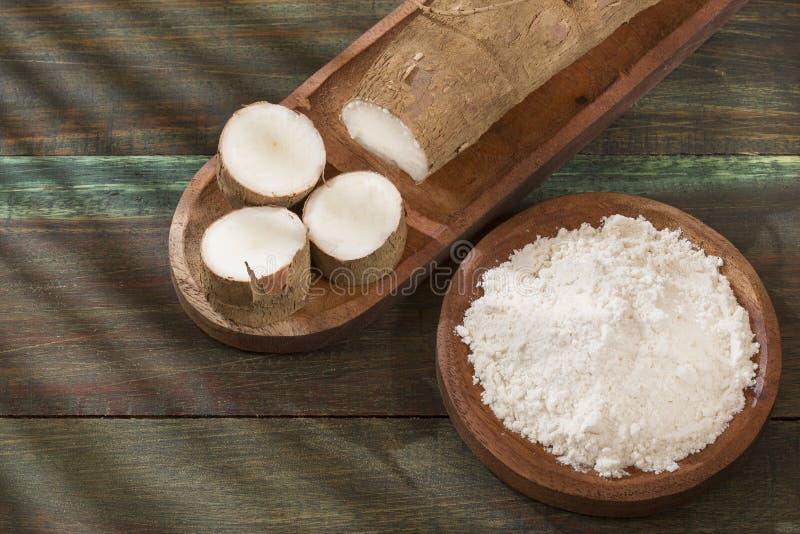 Amidon de manioc - Manihot esculenta photo stock