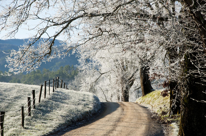 Amidst the frost along a country road. Frost covers trees, land, and fences along a country road stock photos