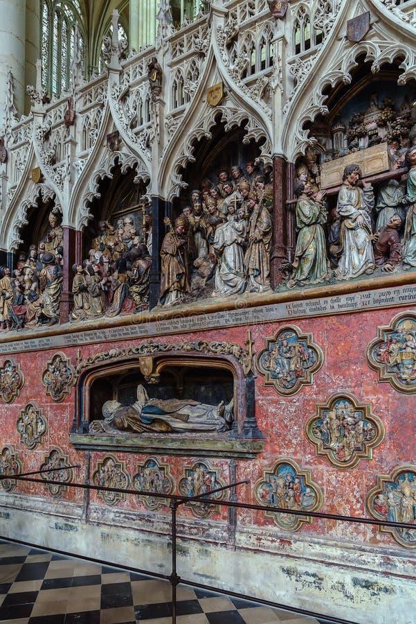 Amiens katedra, Francja obrazy royalty free