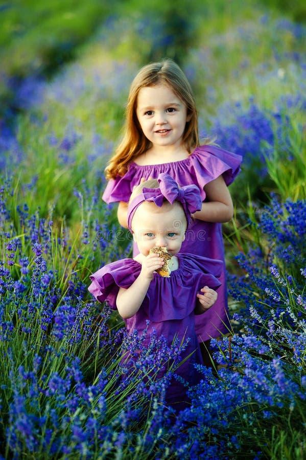 Amiga bonita que descansa na natureza Duas irmãs bonitos que levantam no parque fotografia de stock