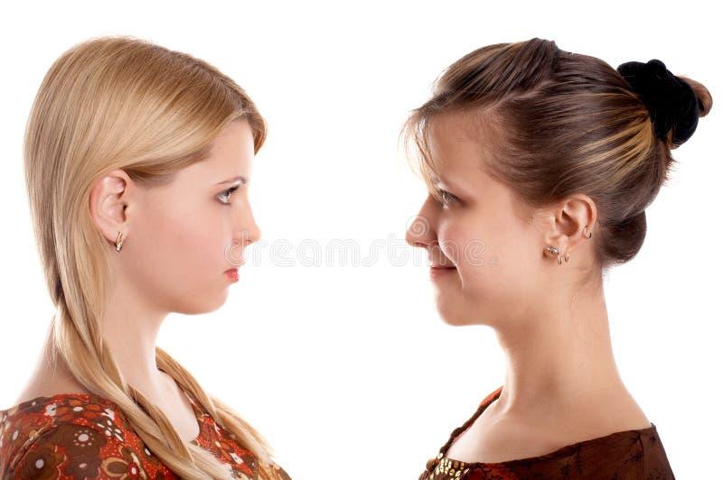 Download Amigas foto de stock. Imagem de cabelo, girlfriends, fêmeas - 12802100