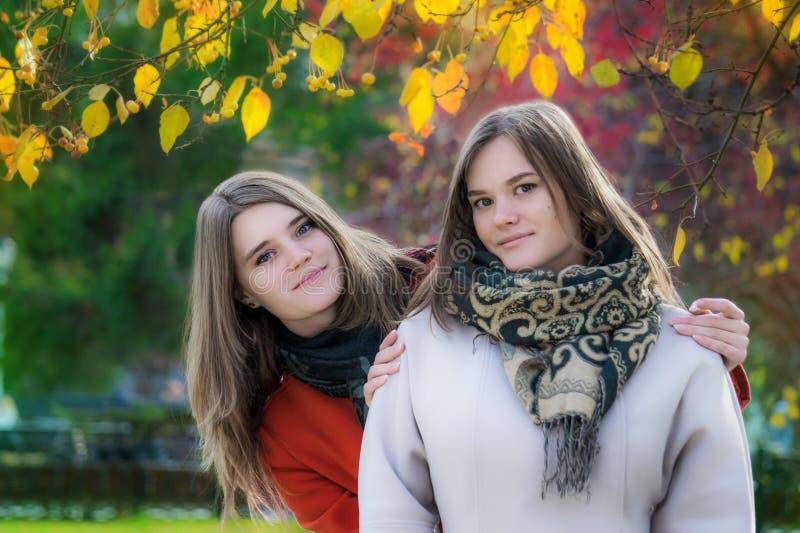 Amigas bonitas do retrato dois em um dia ensolarado do outono fotografia de stock