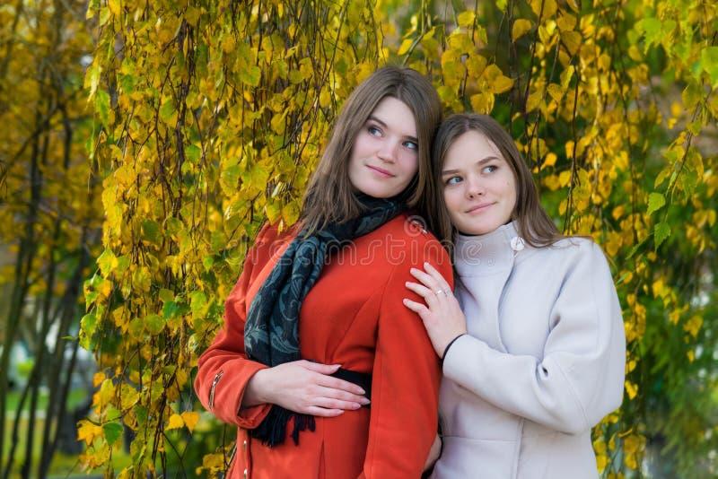 Amigas felizes bonitas do retrato dois em um dia ensolarado do outono foto de stock royalty free