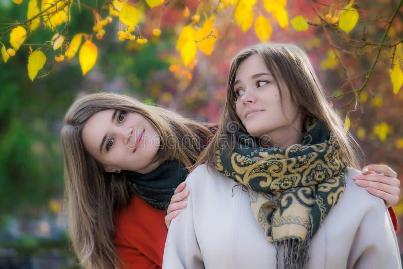Amigas felizes bonitas do retrato dois em um dia ensolarado do outono imagem de stock