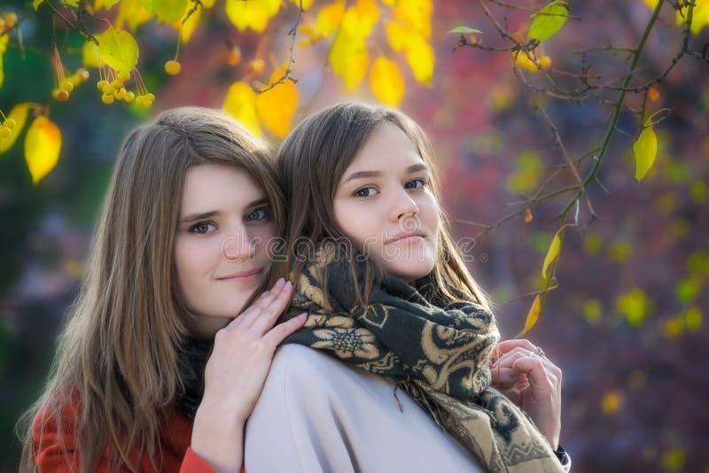 Amigas felizes bonitas do retrato dois em um dia ensolarado do outono fotografia de stock