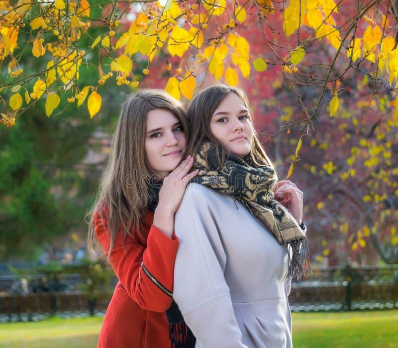 Amigas felizes bonitas do retrato dois em um dia ensolarado do outono imagens de stock royalty free