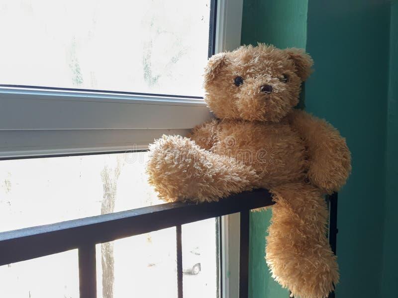Amigo perdido Brinquedo abandonado nos trilhos no corredor fotografia de stock royalty free