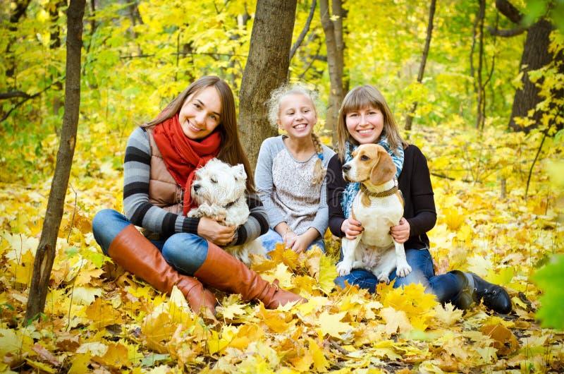 Amigos con los perros imagen de archivo