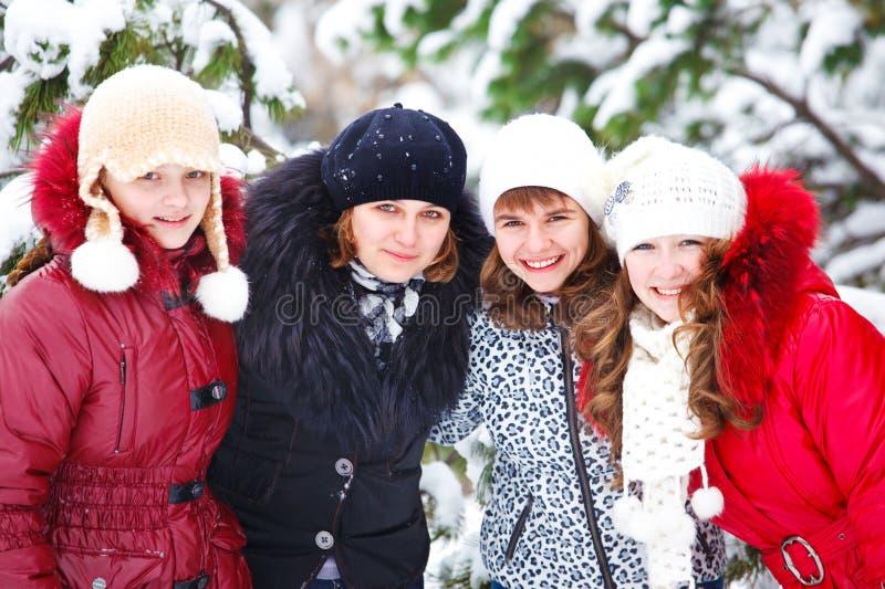Amigos em um parque do inverno imagem de stock royalty free