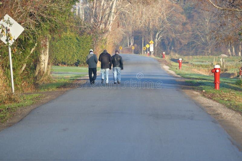Amigos em uma caminhada da manhã fotografia de stock royalty free