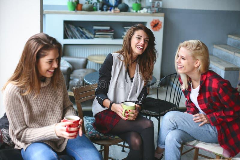 Amigos en un café fotografía de archivo libre de regalías