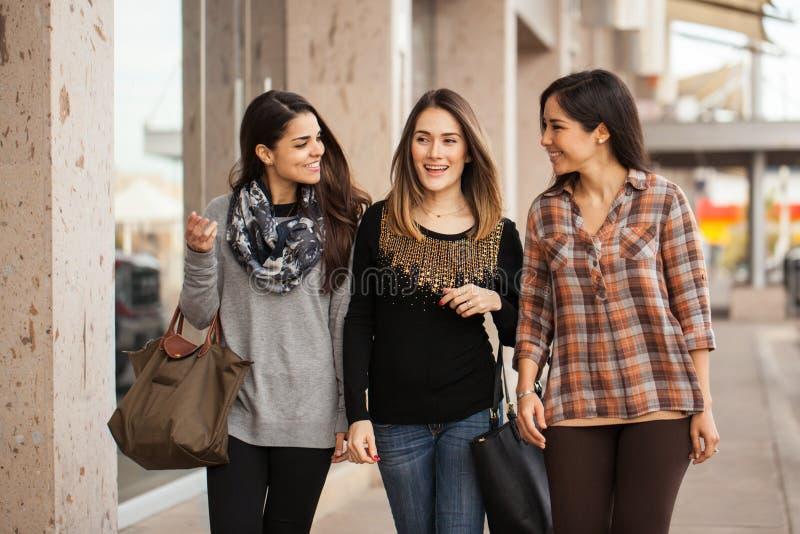 Amigos fêmeas bonitos que andam em torno de uma alameda imagem de stock
