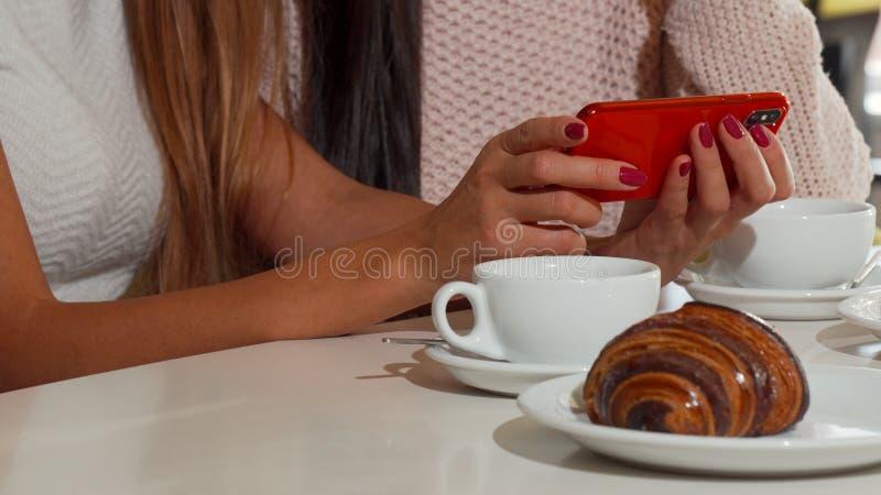 Amigos fêmeas bonitos que usam o telefone esperto na cafetaria junto foto de stock