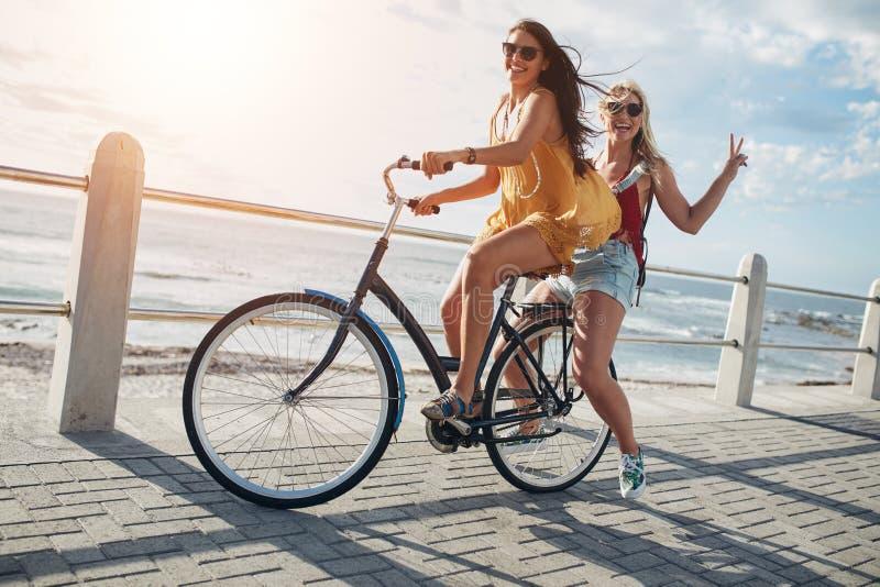 Amigos fêmeas novos à moda em uma bicicleta foto de stock