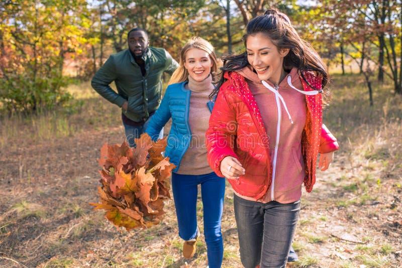Amigos felizes que andam no parque do outono imagens de stock royalty free