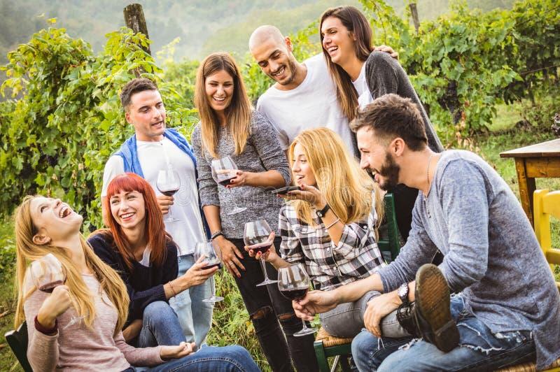 Amigos felizes que têm o divertimento exterior - vinho tinto bebendo dos jovens no vinhedo da adega imagem de stock royalty free