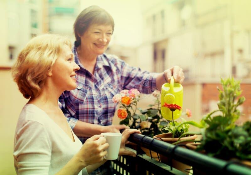 Amigos femeninos en terraza del verano imágenes de archivo libres de regalías