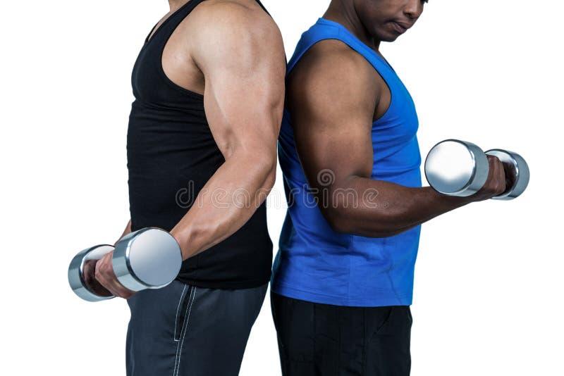 Amigos fuertes que presentan con pesas de gimnasia imágenes de archivo libres de regalías