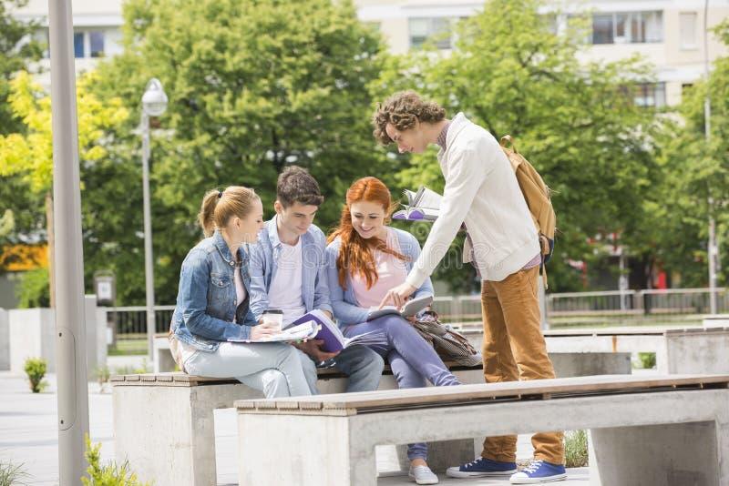 Amigos jovenes felices de la universidad que estudian junto en el campus fotografía de archivo