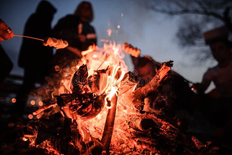 Amigos jovenes y alegres que se sientan y melcochas de la fritada cerca del fuego imágenes de archivo libres de regalías