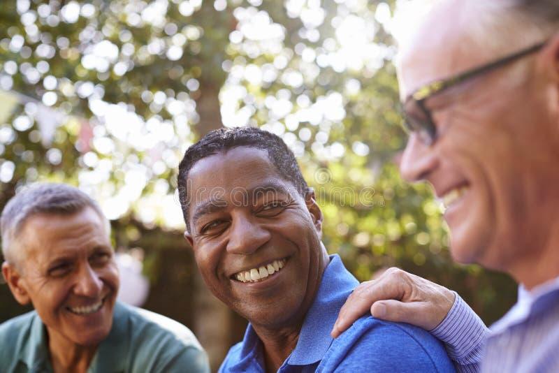 Amigos masculinos maduros que socializan en patio trasero junto imagen de archivo