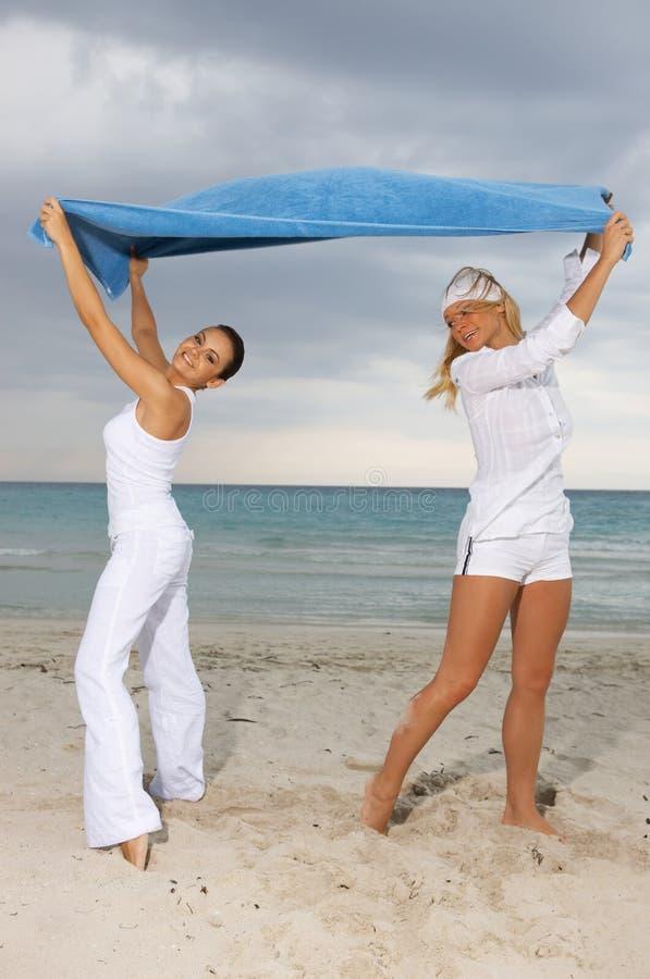Amigos na praia imagens de stock