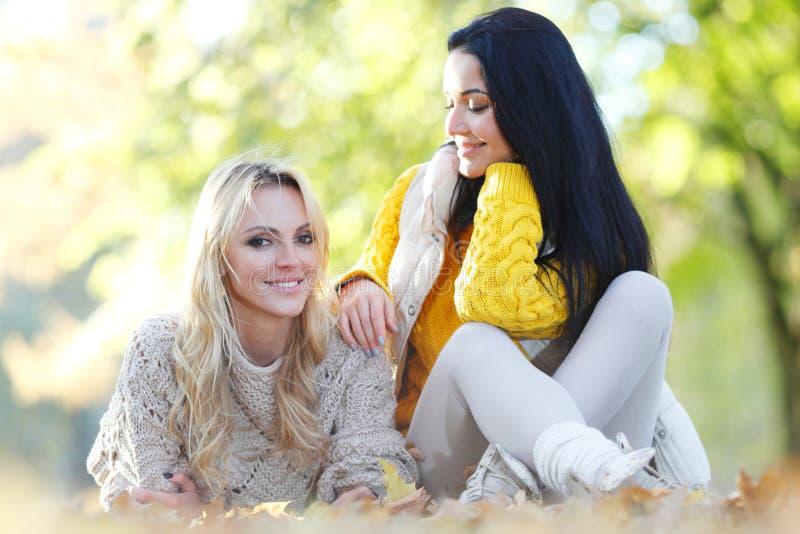 Amigos no parque do outono foto de stock
