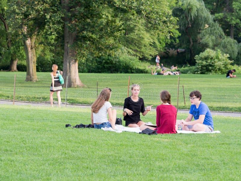 Amigos novos que acampam no grande gramado no Central Park em NY fotografia de stock