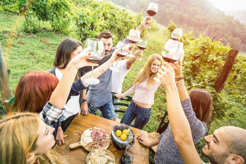 Amigos novos que têm o divertimento que bebe fora o vinho tinto na adega do vinhedo imagem de stock