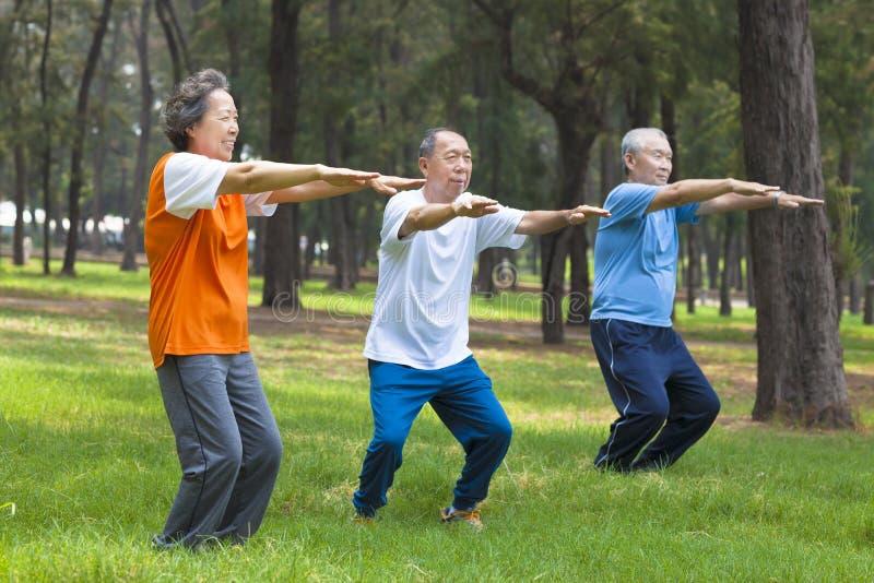 Amigos o familia de los mayores que hacen la gimnasia en el parque fotografía de archivo