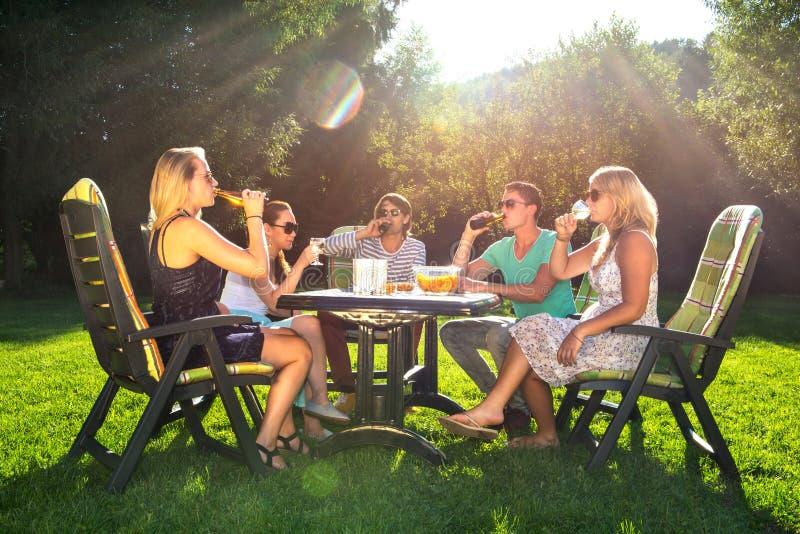 Amigos que apreciam o partido de jardim em uma tarde ensolarada imagens de stock