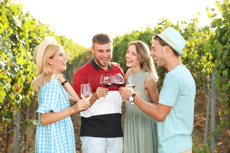 Amigos que bebem o vinho e que têm o divertimento imagens de stock