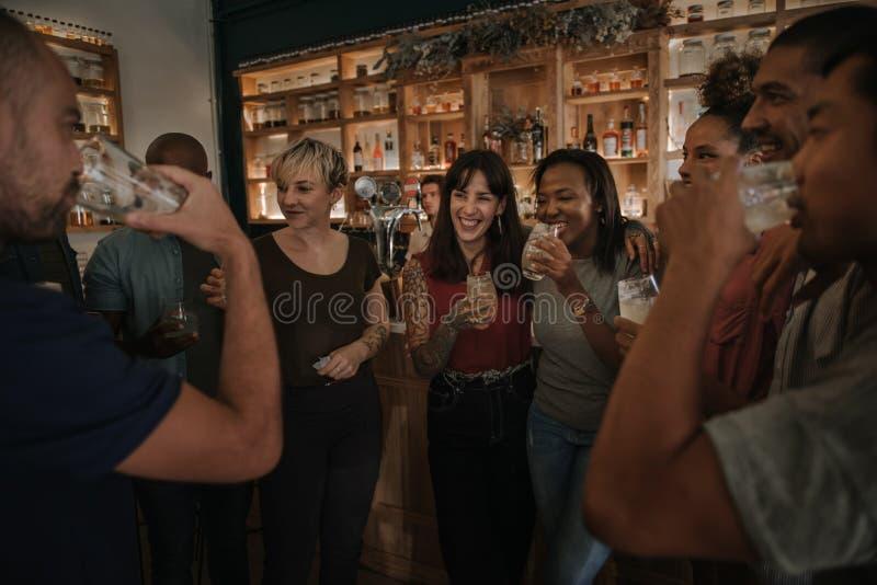 Amigos que beben y que hablan junto en una barra en la noche imagen de archivo