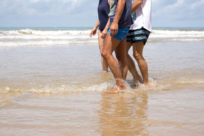 Amigos que caminan a lo largo de la playa imagen de archivo libre de regalías