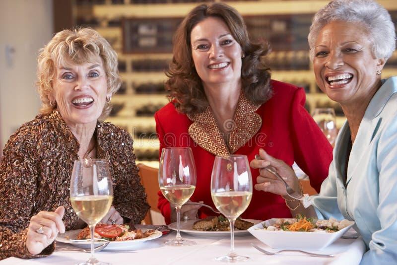 Amigos que cenan junto en un restaurante foto de archivo