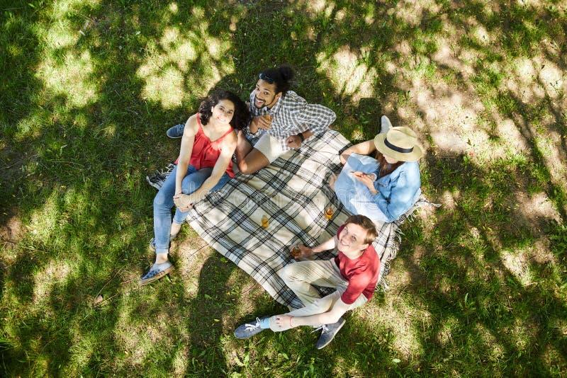 Amigos que disfrutan de comida campestre en hierba fotografía de archivo