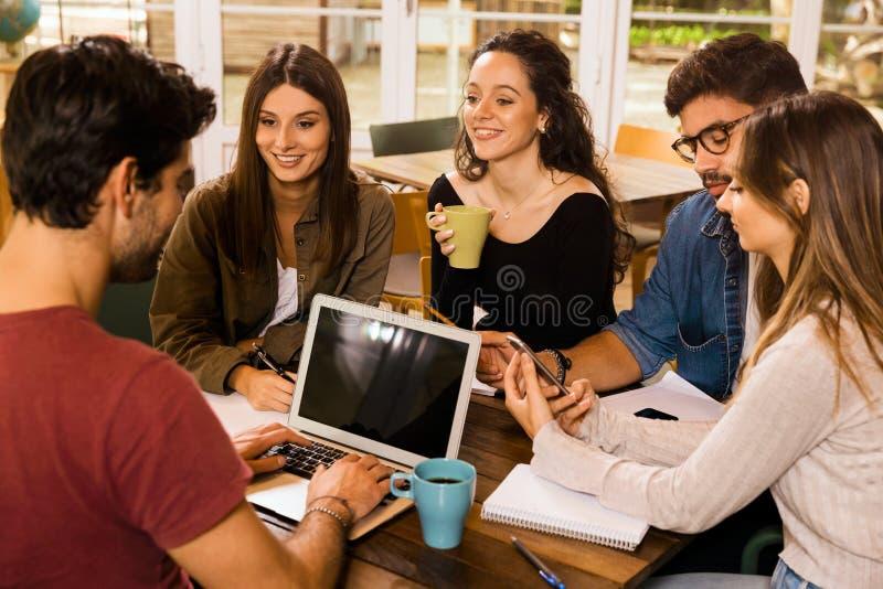 Amigos que estudam junto imagem de stock
