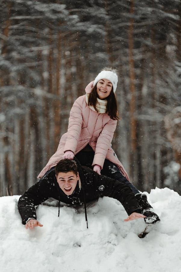 Amigos que jogam com neve no parque imagens de stock