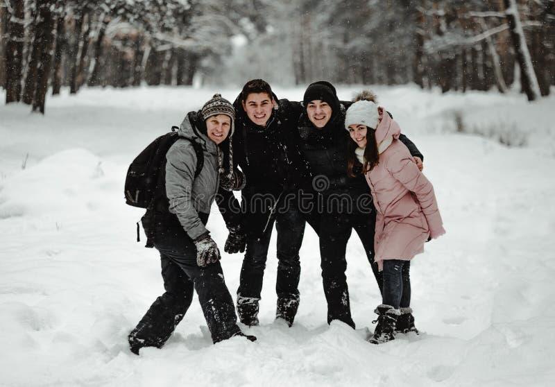 Amigos que jogam com neve no parque fotografia de stock royalty free