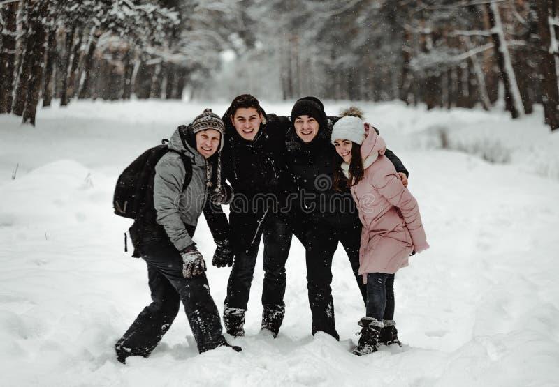Amigos que jogam com neve no parque fotos de stock