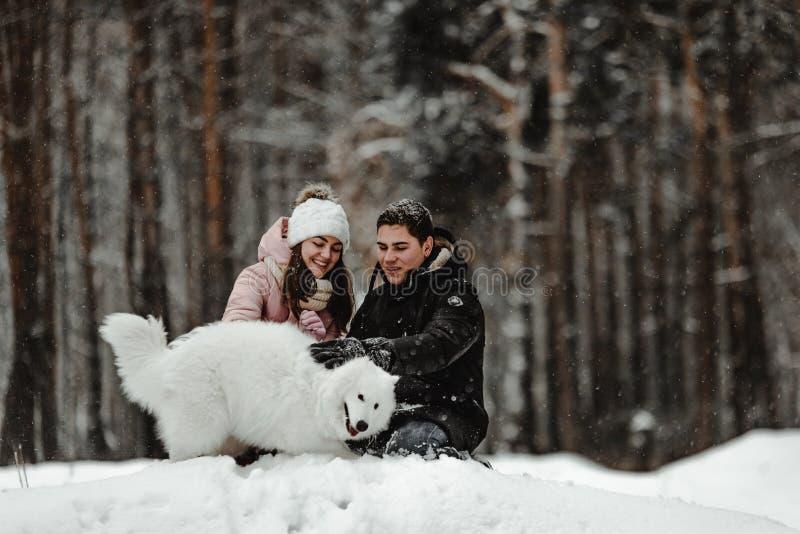 Amigos que jogam com o cachorrinho no parque foto de stock royalty free
