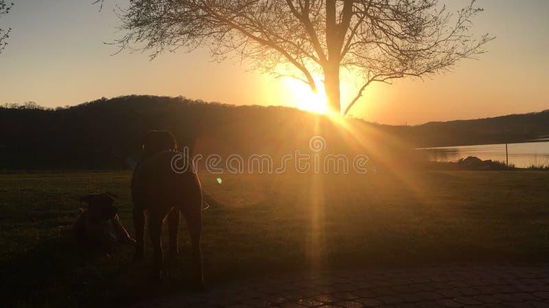 Amigos que miran la puesta del sol fotos de archivo libres de regalías