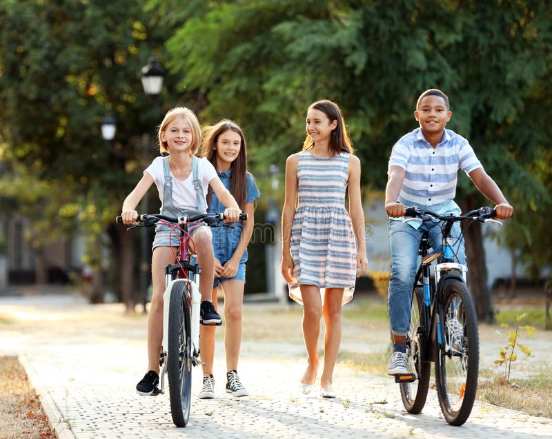 Amigos que montam bicicletas e que andam no parque fotos de stock royalty free