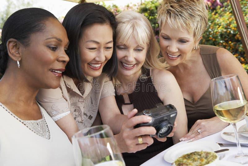 Amigos que olham fotos na câmara digital no partido de jardim imagens de stock royalty free