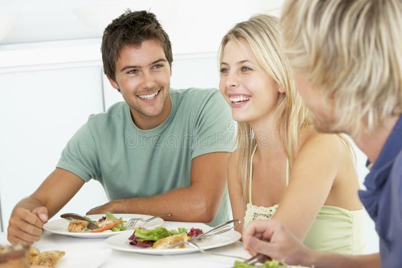 Amigos que relaxam em casa tendo o almoço foto de stock royalty free