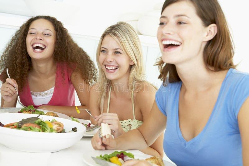 Amigos que se relajan en el país almorzando foto de archivo