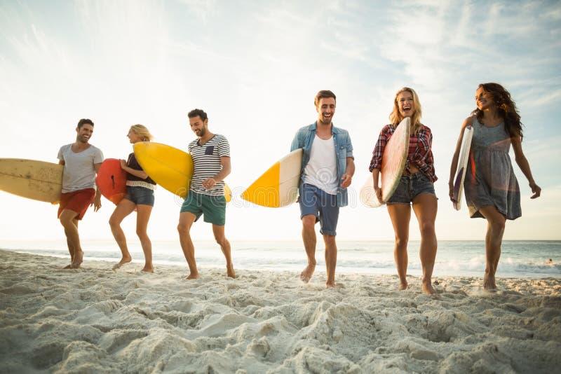 Amigos que sostienen la tabla hawaiana en la playa foto de archivo