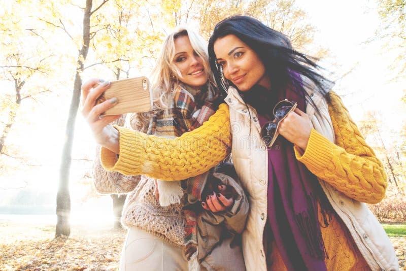Amigos que tomam o selfie no parque do outono imagem de stock royalty free